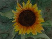 Sonnenblume-2016-36x48-Aquarell