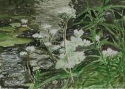 Teich-im-Regen-2012-18x24-Aquarell-Gouache
