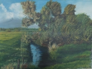 Wuemmewiesen-1986-60x80-Oel